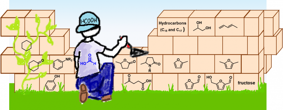 Production of Hydrogen from biomasses a Hot topic for Green SOC